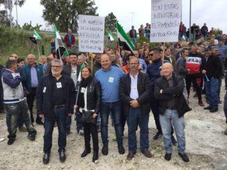 Los productores de pimentón exigen un aumento del precio y el control de las plantaciones ilegales