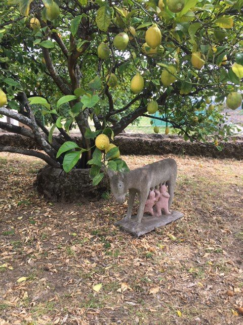 El simpático huerto de esculturas de Timoteo Gironda en Viandar