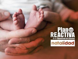 ayudas natalidad